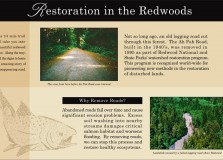 infographic-redwood-national-park-sign-1